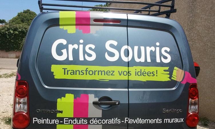 Véhicule Gris Souris